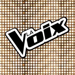 La voix (émission)